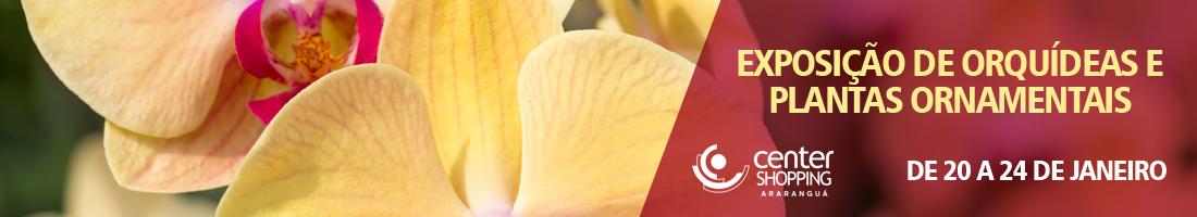 Exposição de Orquídeas [banner menor]