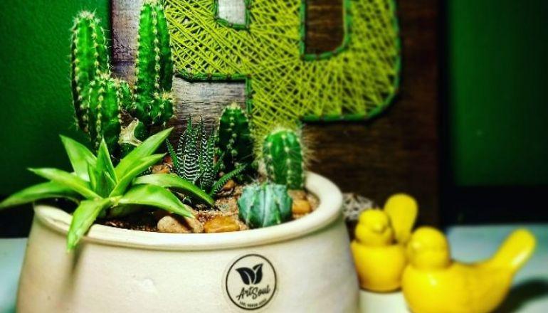 Art Soul | Vem aí exposição de terrários e mini jardins no Center Shopping